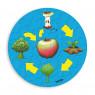 [Kolobeh života - Rast jablka]