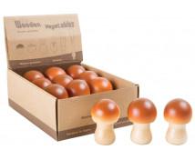 [Dřevěné houby]
