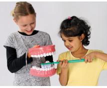 [Ako sa správne čistia zuby ?]