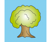 [Kapsa s motívem - Listnatý strom]