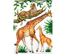 [Nástěnné nálepky - Žirafa a gepard]
