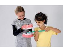 [Model na ukážku čistenia zubov]