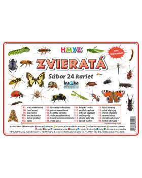 Precvičovacie karty - Zvieratá - hmyz-slovenská verzia