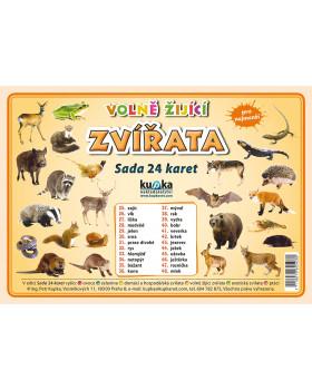 Precvičovacie karty - Zvieratá - voľne žijúce-česká verzia