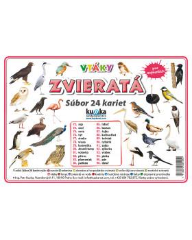 Precvičovacie karty - Zvieratá - vtáky-slovenská verzia