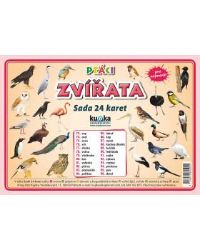 Precvičovacie karty - Zvieratá - vtáky-česká verzia