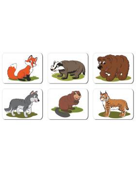 Zvieratká - les