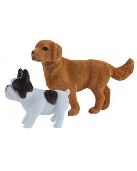 Aké psíky poznáš?