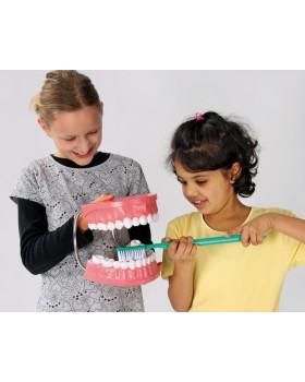 Ako sa správne čistia zuby ?