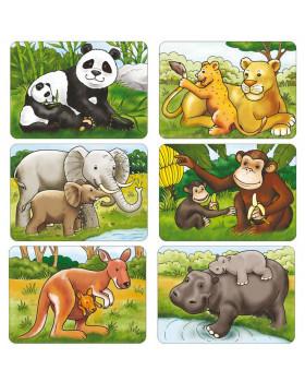 Exotická zvířata