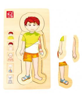 Anatomické vrstvené puzzle - Chlapec