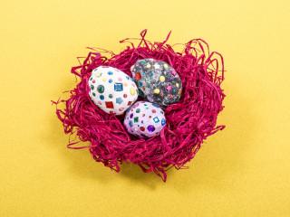 Dračie vajcia v hniezde